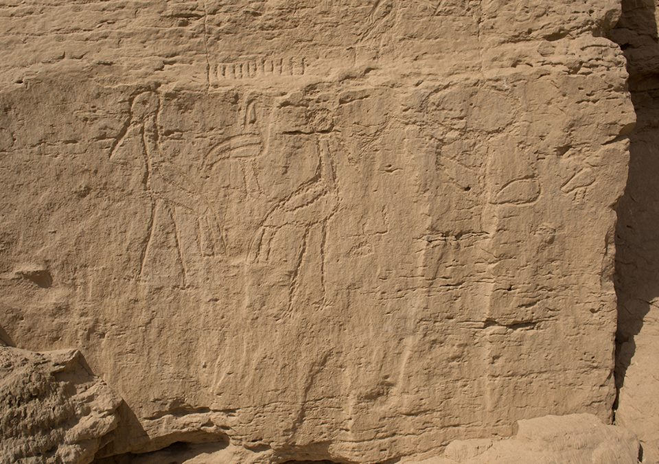 Yale mission makes 5,500 years discovery on hieroglyphic in Egypt desert