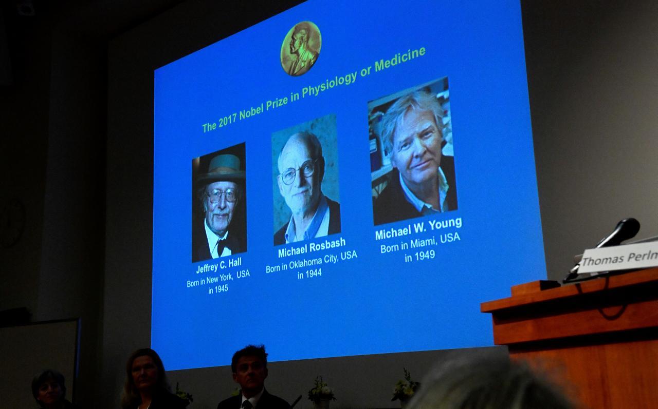 Nobel Prize In Medicine Awarded To 'Body Clock' Scientists
