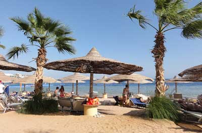 Sharm el Sheikh, Egypt Monthly Weather Forecast - weather.com