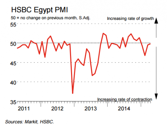 PMI: Egypt business activity expands in June for first time in five
